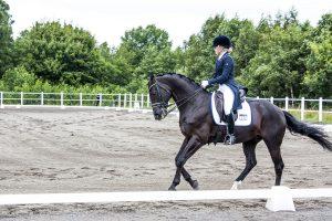 Dressyrtävling ponny och ridhäst! @ Jönköpings Fältrittklubb